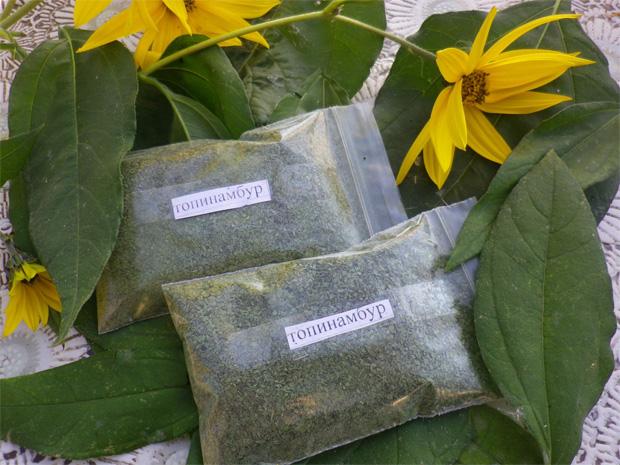 Два мешочка с толчеными листьями топинамбура на фоне свежих