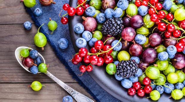 Влияние на организм ягод при сахарном диабете